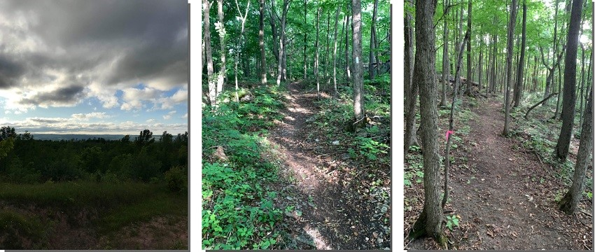 Images of Bruce Trail reroute on Camplin property in Beaver Valley. Photos John Burton 2019.